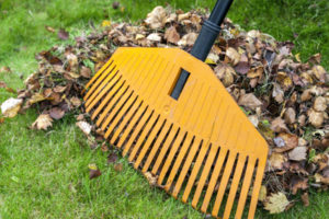 leaf raking services matthews nc