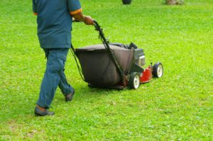 lawn cutting services matthews nc