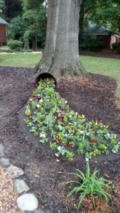 landscapers charlotte nc, landscapers in charlotte