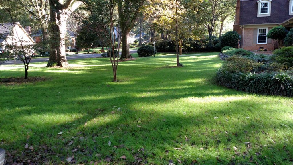lawn care services charlotte nc, lawn aeration charlotte nc