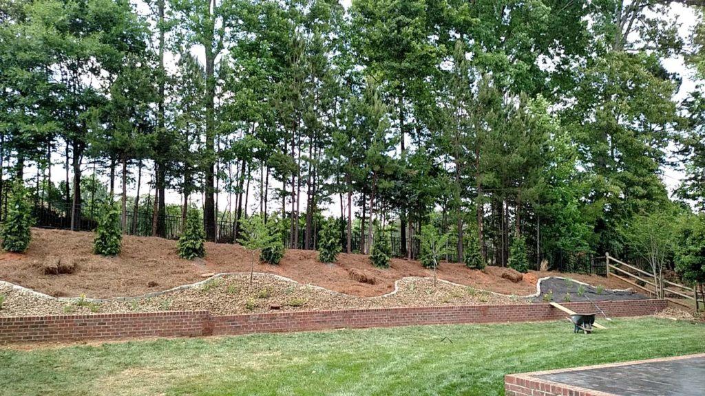 lawn mowing services, lawn fertilizer service