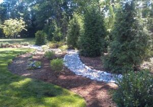 yard cleaning services, yard clean up services