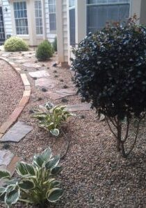 landscape companies in charlotte nc